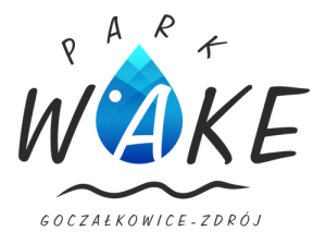 logo_wake_nowe_mini